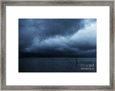Waiting Out The Storm Framed Print by Linda Shafer
