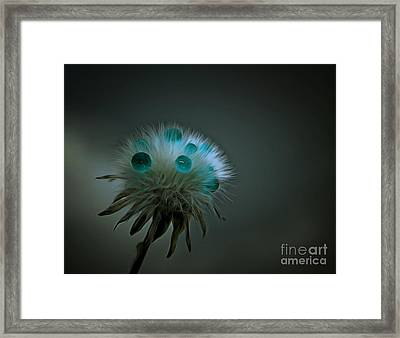 Waiting The Storm Out Framed Print by Krissy Katsimbras