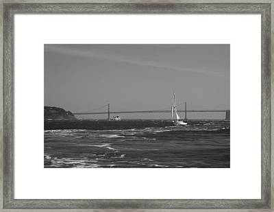 Wake On The Sfb Framed Print by Sonja Anderson