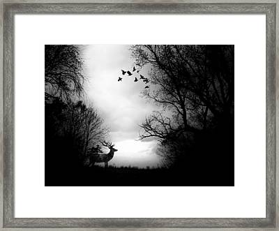 Waking From Winters Sleep Framed Print