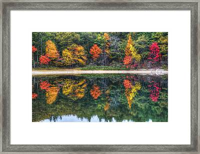 Walden Pond Fall Foliage Concord Ma Reflection Framed Print