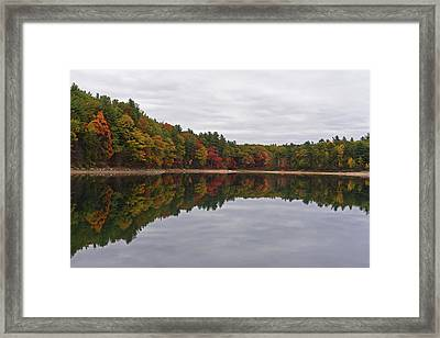 Walden Pond Fall Foliage Concord Ma Reflection Trees Framed Print by Toby McGuire
