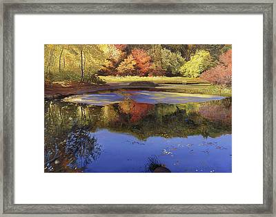 Walden Pond II Framed Print by Art Chartow