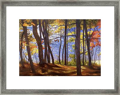 Walden Pond IIi Framed Print by Art Chartow