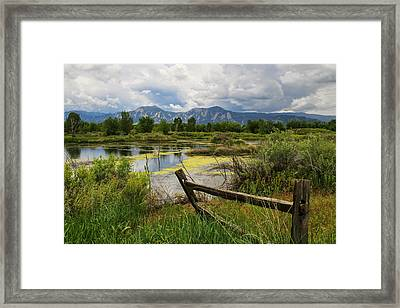 Waldon Ponds Framed Print