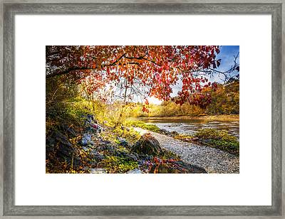 Walk Along The River Framed Print by Debra and Dave Vanderlaan