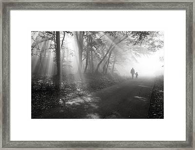 Walk In The Light Framed Print by Floriana Barbu
