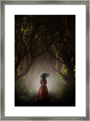 Walk In The Magic Forrest Framed Print