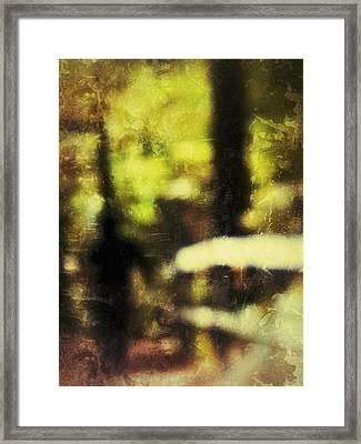 Walk In The Park Framed Print