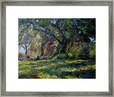 Walk In The Woods Framed Print by Mark Hartung