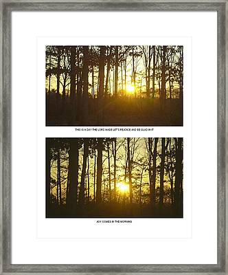 Framed Print featuring the photograph Walk In The Woods Two by Robin Coaker
