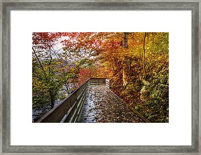 Walk Into Autumn Framed Print by Debra and Dave Vanderlaan