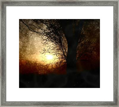 Walk Quietly Into The Night With Me. Framed Print