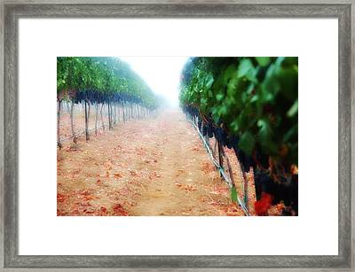 Walk The Line Framed Print by Kristine Ellison