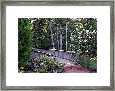 Walk With Me Framed Print by Eva Thomas