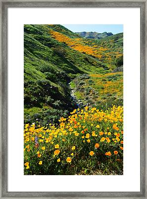 Walker Canyon Vista Framed Print