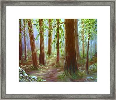 Walker Park Woods Framed Print