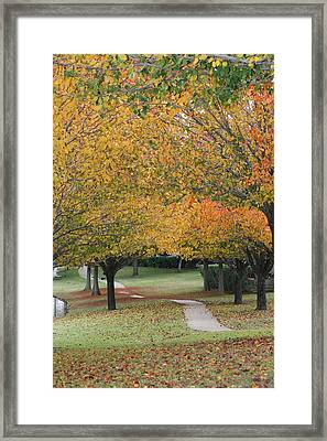 Walker's Delight Framed Print by David Wahome