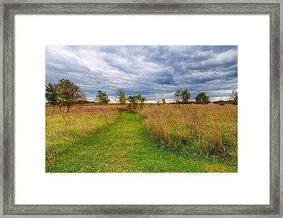 Walking Through A Battlefield Framed Print