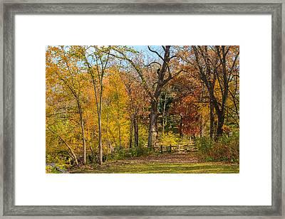Walking At Herrick Lake Framed Print