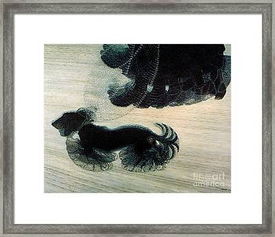 Walking Dog On Leash Framed Print by Mindy Sommers
