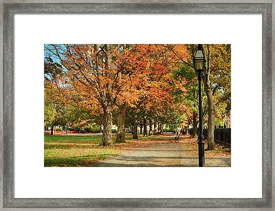 Walking Down The Path Framed Print by Jeff Folger