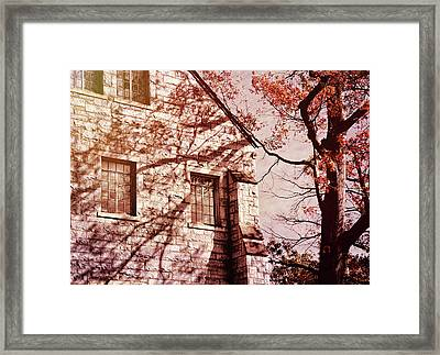 Walking In Shadows Framed Print by JAMART Photography