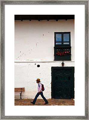 Walking Framed Print by Jess Kraft