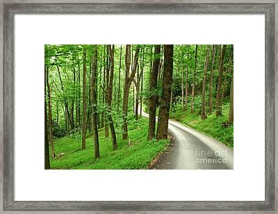 Walking On A Country Road - Appalachian Mountain Backroad Framed Print