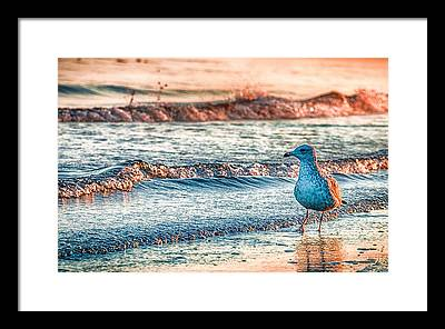 Walk Framed Prints