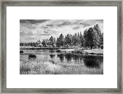 Walking On Thru II Framed Print