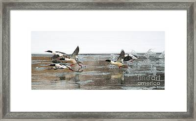 Walking On Water Framed Print by Mike Dawson