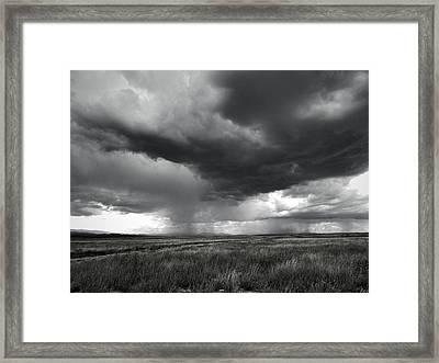 Walking Rain Framed Print