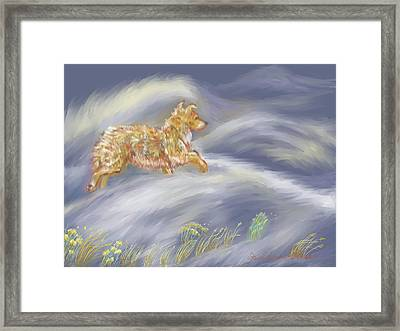 Walking The Dog In A Ground Blizzard Framed Print