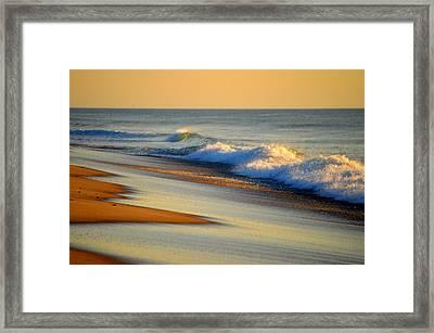 Walking The Golden Seashore Framed Print by Dianne Cowen