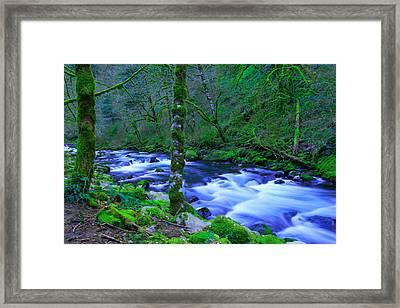 Walking The River Framed Print