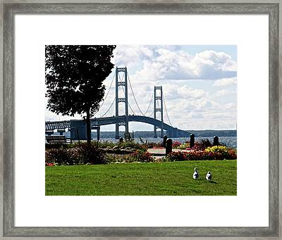 Walking To The Bridge Framed Print