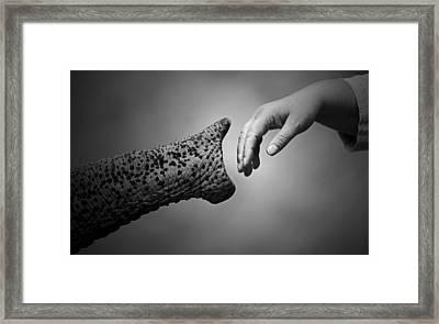 Walking Together .... Framed Print by Antje Wenner