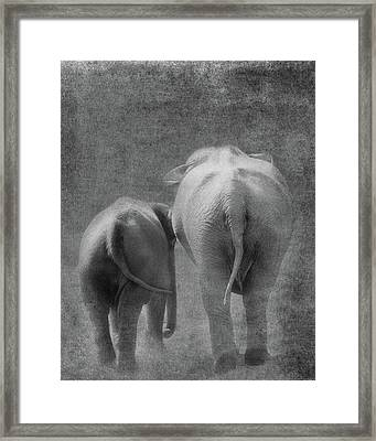 Framed Print featuring the photograph Walking Together by Rebecca Cozart