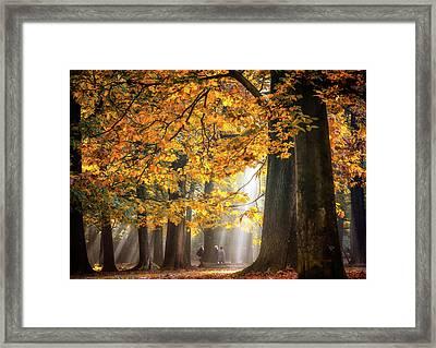 Walking Under The Autumn Lights Framed Print