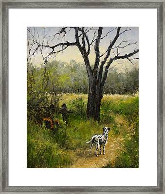 Walking With My Farley Framed Print