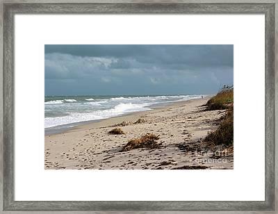 Walks On The Beach Framed Print by Megan Dirsa-DuBois