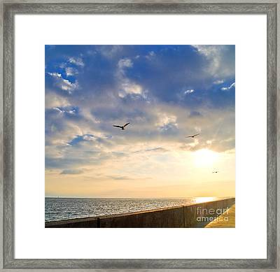 Walkway Along Oceanfront Framed Print by David Buffington