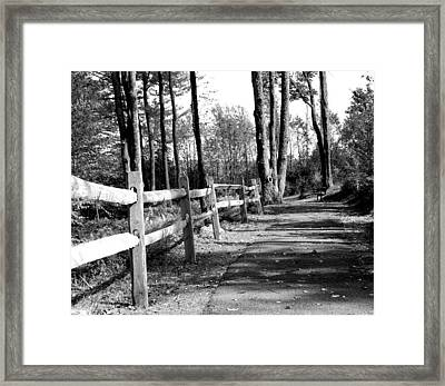 Framed Print featuring the photograph Walkway by Rick Morgan