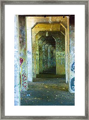 Walkway To Insanity Framed Print by Timothy Hedges