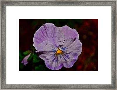 Wall Flower Framed Print by Brynn Ditsche