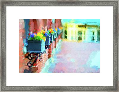 Wall Flower On The Mills In Amesbury Ma Framed Print