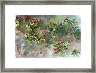 Wall Flowers Framed Print by Janet Butler