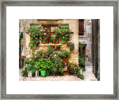 Wall Of Flowers Framed Print