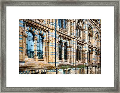 Wall Of Natural History Museum In London Framed Print
